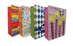 5138 - Gift Bag & Tissue Assortment with special discounts