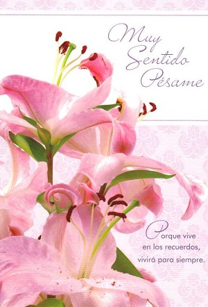 6758 - $2.80 Retail Each - Wrapped Spanish Cards - Sympathy PKD 6