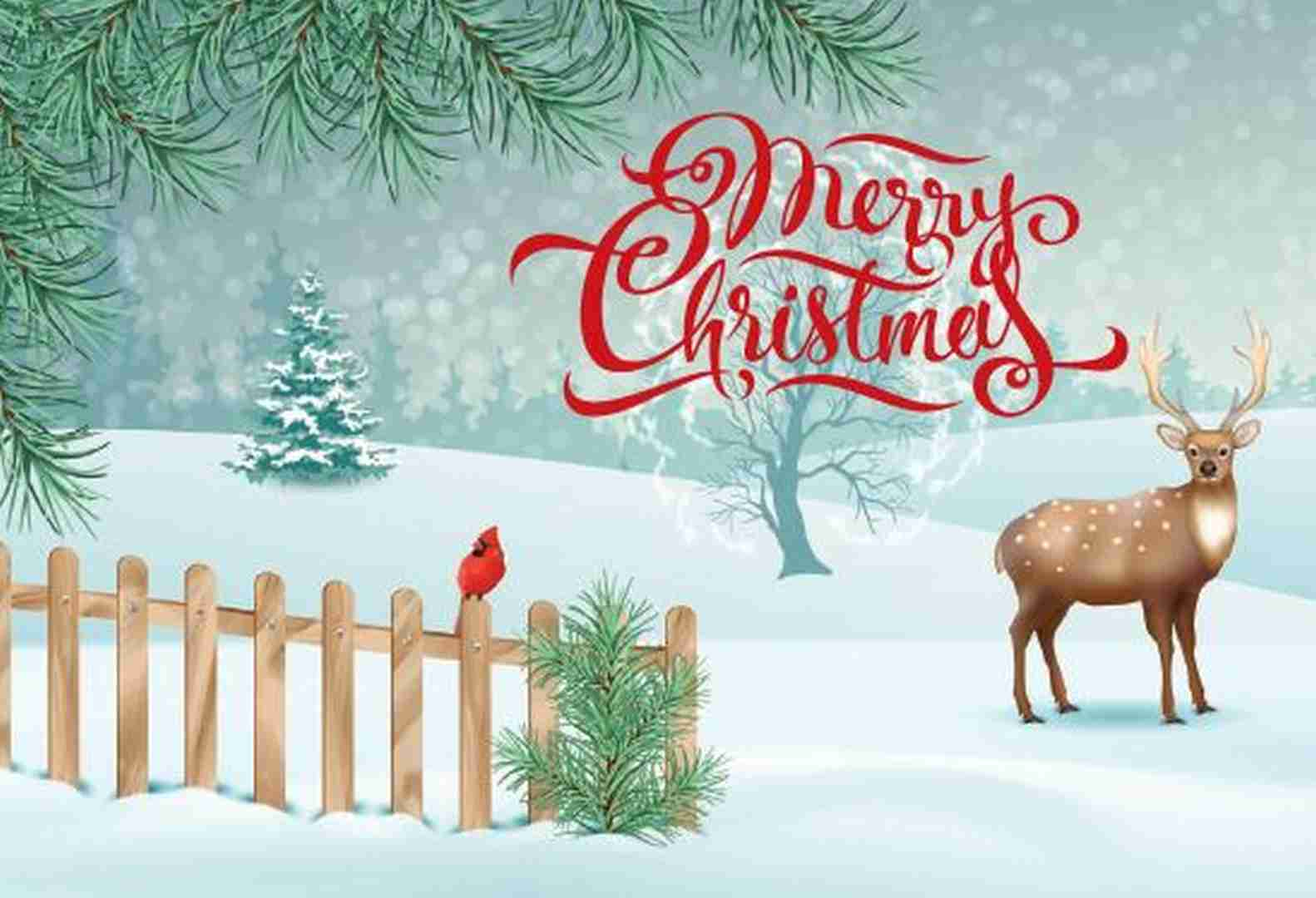 Wholesale Christmas Cards