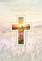 6760 - $2.80 Retail Each - Wrapped Spanish Cards - Sympathy Religious PKD 6