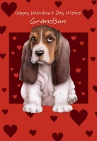 val11036 - $2.80 Retail Each - Valentine's Day Grandson Juvenile Greeting Cards - English Language - wholesale units of 6 cards