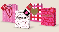 VGB004 - $3.49 Retail each - Valentine's Day Medium Gift Bag Assortment - wholesale units of 48 Medium Gift bags