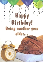 1233 - $3.49 Retail Each - Birthday Humorous Greeting Cards PKD 6