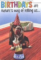 1243 - $3.49 Retail Each - Birthday Humorous Greeting Cards PKD 6