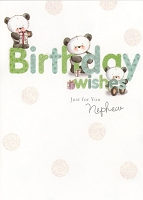 3304 - $2.99 Retail Each - Birthday Nephew Juvenile PKD 6