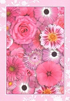 4824 - $3.49 Retail Each - Blank Note Card - PKD 6