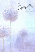 4999F - $3.99 Retail Each - Sympathy You & Your Family PKD 6