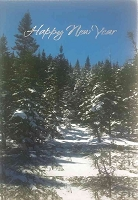 CH251 - $2.80 Retail Each - Christmas New Year Greeting Card - PKD 6