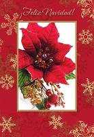 SCH02 - $2.80 Wrapped Spanish Cards - Christmas General PKD 6