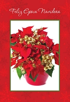 SCH05 - $2.80 Wrapped Spanish Cards - Christmas General PKD 6