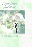 MDS15 Spanish Mothers Day Mother PKD 6