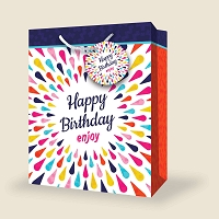 VL1004 - Large Birthday Gift Bags PKD 12s