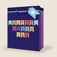 VM1002 - Medium Birthday Gift Bags PKD 12s