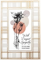 4876 - $5.99 Retail Each - Sympathy To You & Family Greeting Cards PKD 3 - Premium