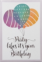 1827 - $3.99 Retail Each - Premium Birthday Teen Greeting Card PKD 6