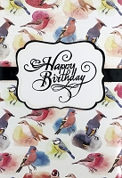 1139 - $5.99 Retail Each - Birthday General Greeting Card - PKD 3