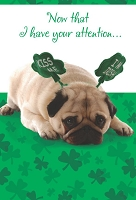SPD013 $2.80 Retail - value St. Patricks Day Greeting Cards - General - wholesale units of 6 cards