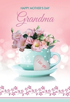 MD342 - Retail $3.99 Each - Mothers Day Grandma Greeting Cards PKD 3 - Premium