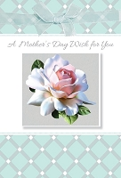 MD313 - Retail $5.99 Each - Mothers Day General Greeting Cards PKD 3 - Premium
