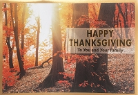 THA14 - $3.99 Retail Each - Premium To You and Family Thanksgiving Greeting Card - PKD 3