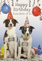 6050 - $3.99 Retail Each - Birthday Card From Both Cute PKD 6