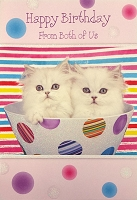 6051 - $3.49 Retail Each - Birthday Card From Both Cute PKD 6