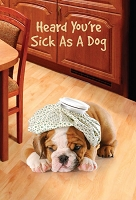 6085 - $3.99 Retail Each - Get Well Greeting Cards Cute PKD 6