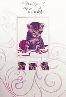 6092 - $3.99 Retail Each - Thank You Greeting Cards Cute PKD 6