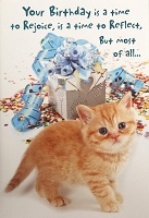 6095 - $3.99 Retail Each - Birthday General Greeting Cards Cute PKD 6