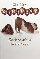 6099 - $3.99 Retail Each - Birthday General Greeting Cards Cute PKD 6