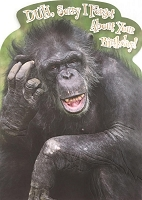 6151 - $3.49 Retail Each - Humorous Birthday Belated Greeting Cards PKD 6