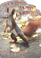 6154 - $3.49 Retail Each - Humorous Birthday Greeting Cards PKD 6