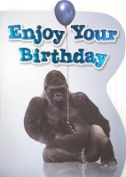 6157 - $3.49 Retail Each - Humorous Birthday Greeting Cards PKD 6