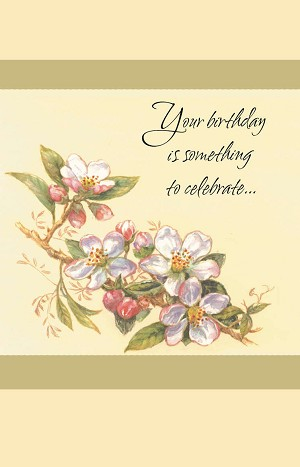 Wholesale greeting cards friend 1305 250 retail each birthday friend pkd 6 front of card m4hsunfo